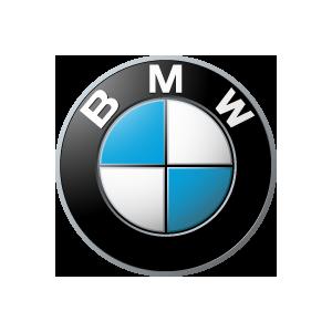 WheelDamper789 Rear Wheel Rubber Cush-Drive BMW F650 /& G650; 27 71 2 345 789